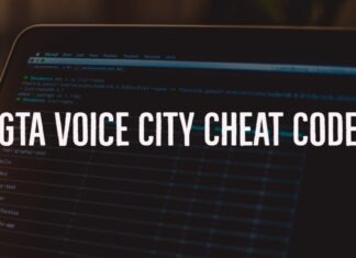 GTA Voice City cheat code
